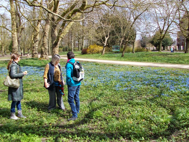 Rondleiding-Noorderplantsoen-08-De_Korenbloem_Groningen